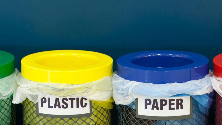 Verschiedenfarbige Mülleimer aufgereiht vor einer blauen Wand.