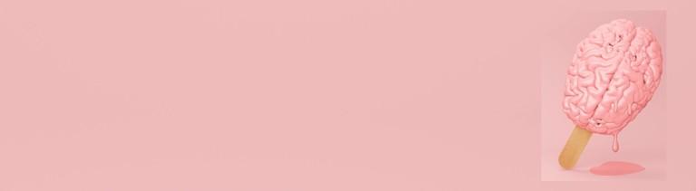 Ein rosa Hirn an einem Eisstiel schmilzt.
