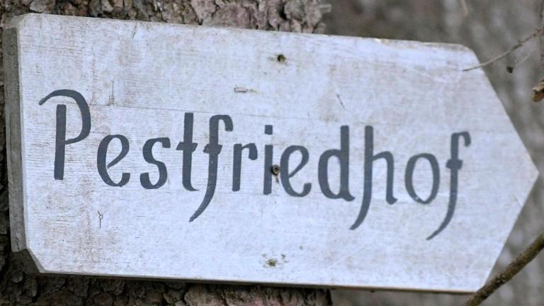 Ein Wegweiser ist zu sehen, der an einem Baumstamm hängt und auf dem das Wort Pestfriedhof steht.