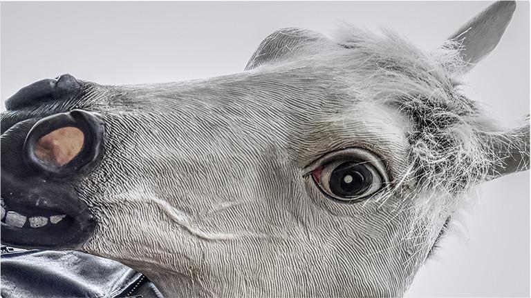 Ein klarer Fall von Unsinn: Pferd in Lederjacke