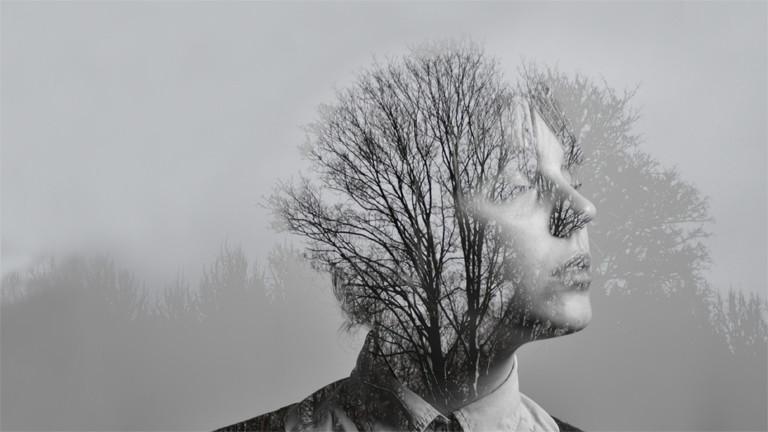 Eine Frau, deren Kopf in einen Wald übergeht