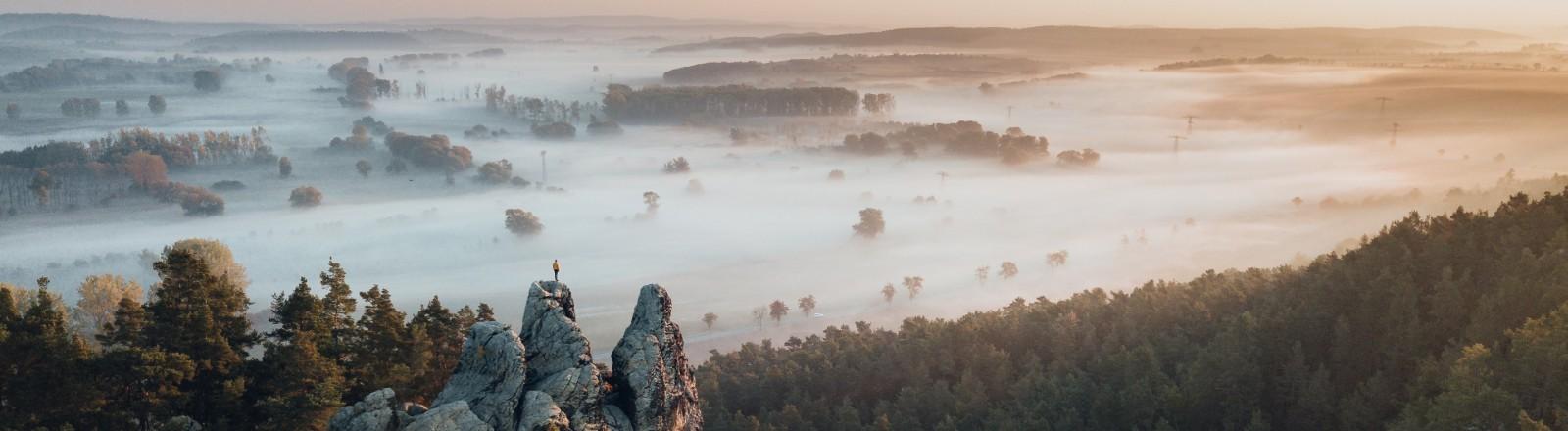 Max Fischer Landschaftsfotograf Deutschland Hamburger Wappen, Harz