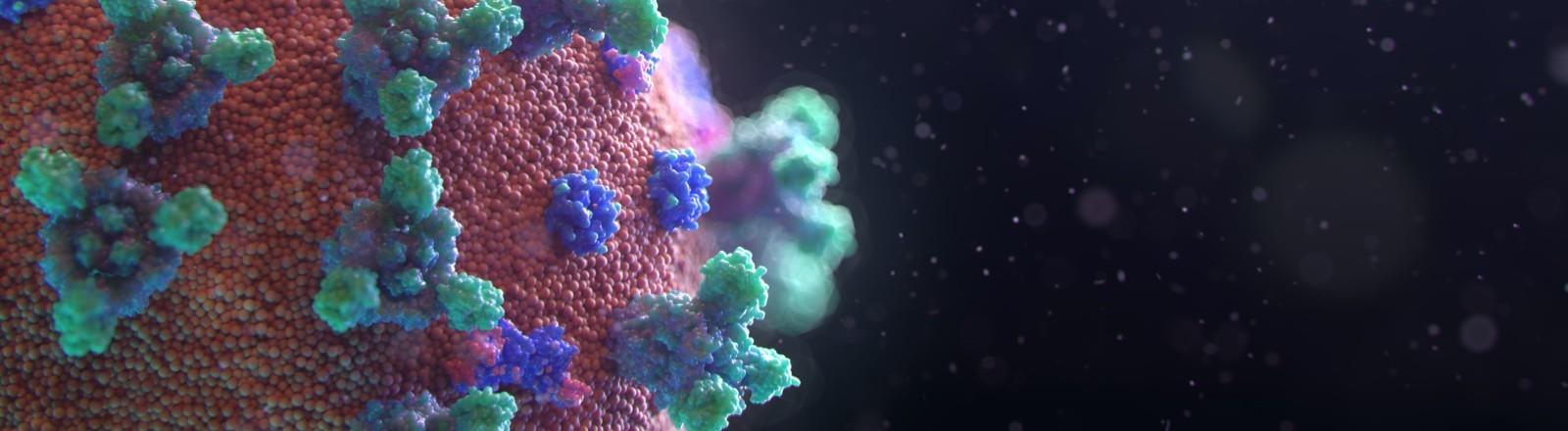 Eine Visualisierung des Corona-Virus