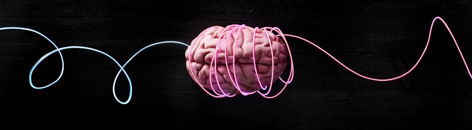 Gehirn, Symbolbild für Lernen von Bewegungsabläufen