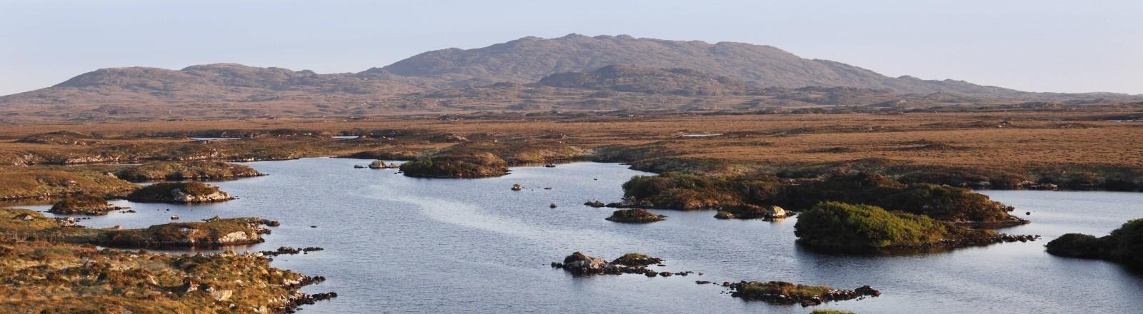 Eine Moorlandschaft in Irland