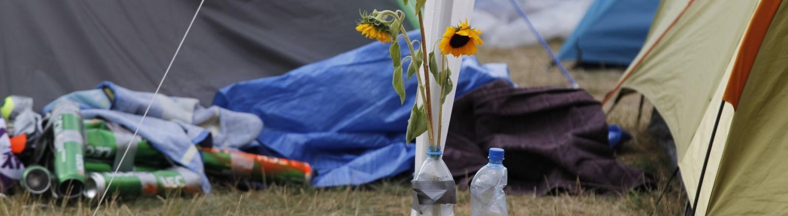 Eine Sonnenblume steckt in einer Wasserflasche auf einem Festivalgelände