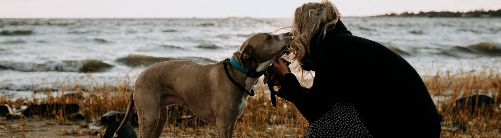 Eine Frau kniet mit ihrem Hund am Strand