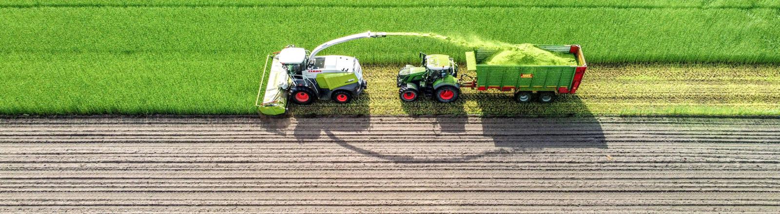 Ein Traktor, der ein Grünroggenfeld häckselt