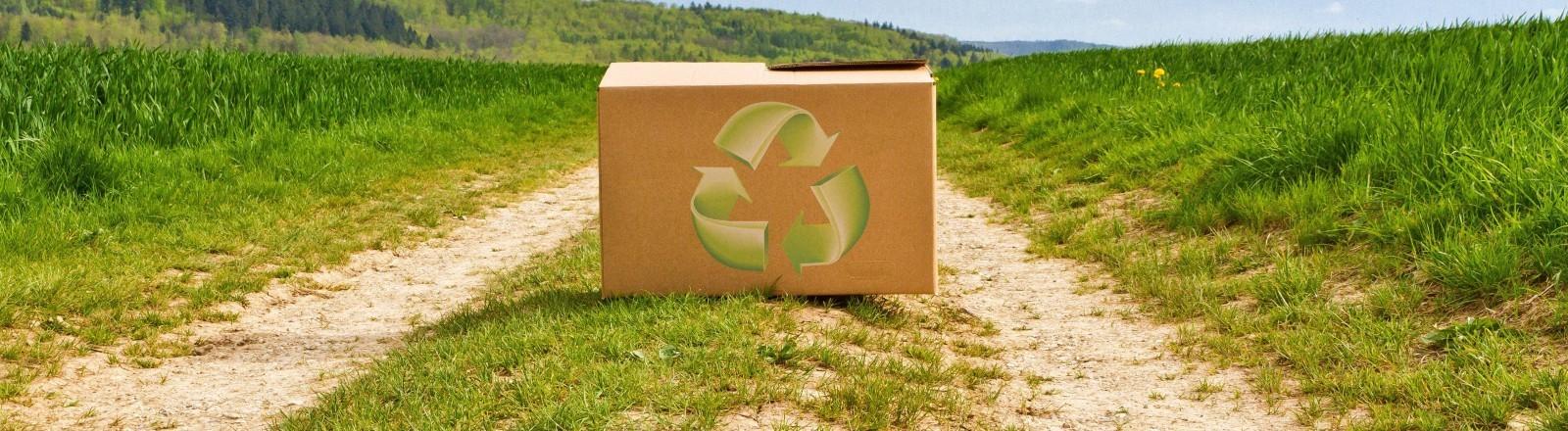 Paket mit Recyclingzeichen steht auf einem Wiesenweg