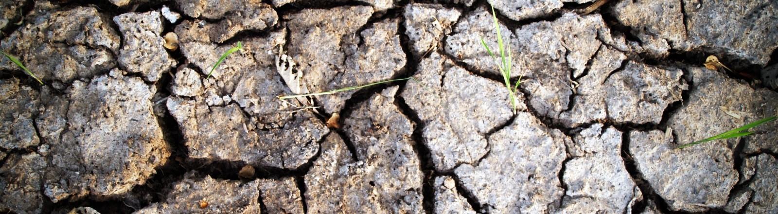 Ein aufgerissener und dünner Boden