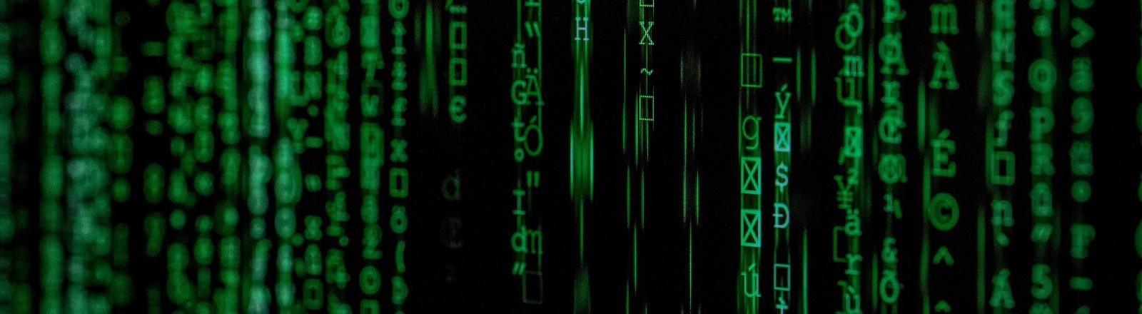 Grüne Datensätze rasen über einen schwarzen Bildschirm
