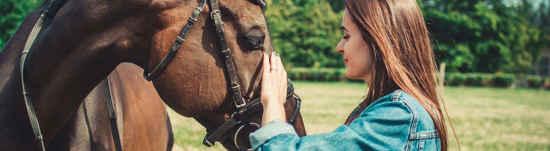 Eine junge Frau tätschelt die Schnute eines braunen Pferdes