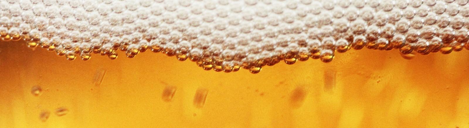 Ein Bier mit Bierschaum
