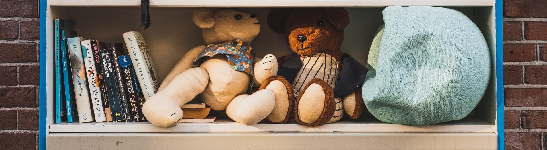 Regal mit gebrauchten Büchern, Teddybären, Lampenschirm